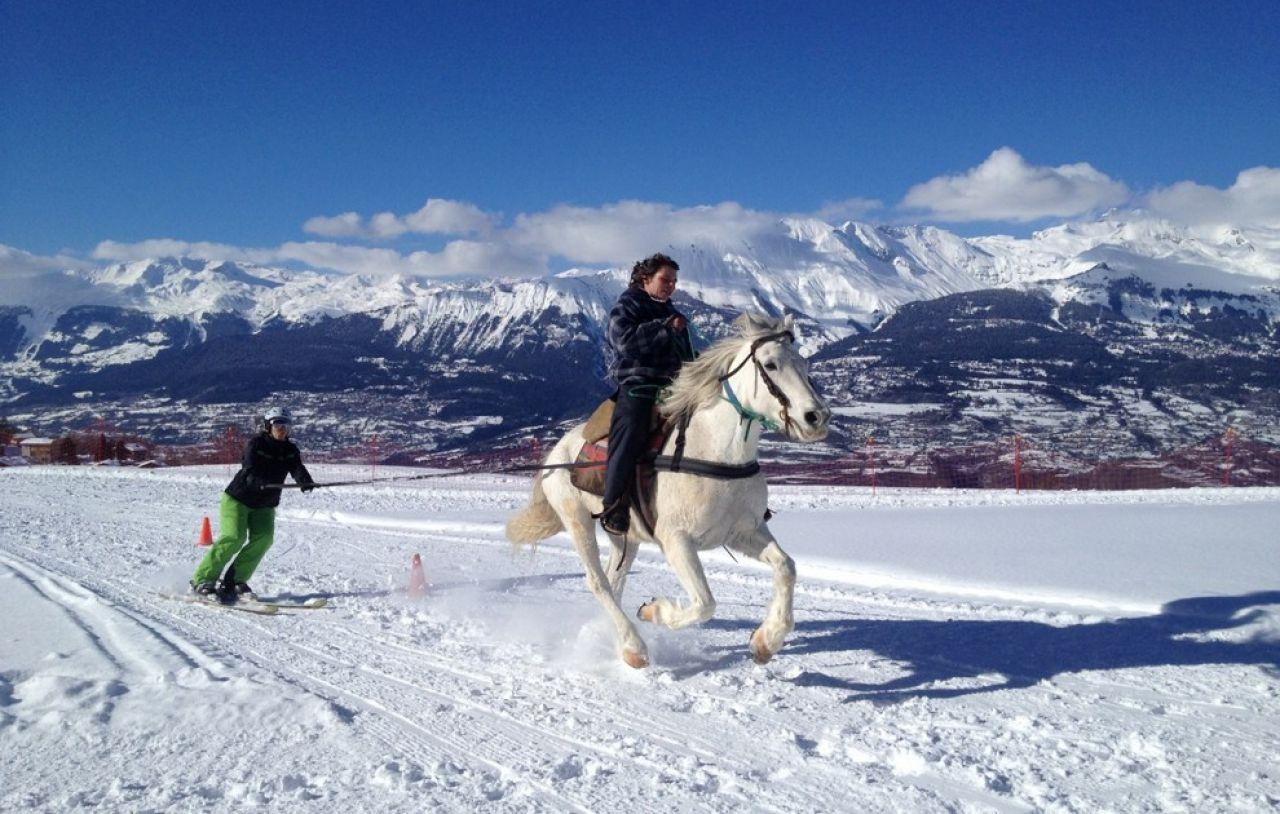 Un cavalier avec son compagnon de ski attelé