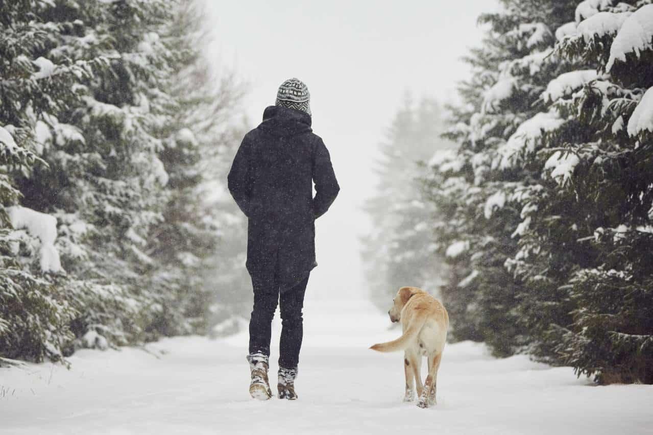 Un homme vêtu de son manteau d'hiver en compagnie de son chien